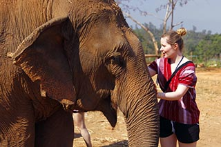 Mahout Experience